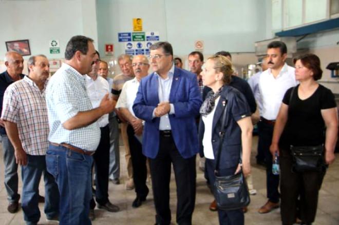 CHP'li Sındır'dan Zeytin Üreticilerine Destek Sözü
