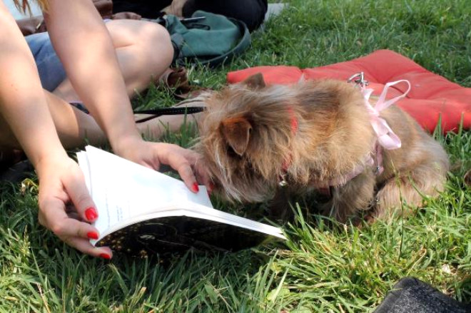 Edirneli Kitapseverlerden Okuma ve Kitap Takas Etkinliği