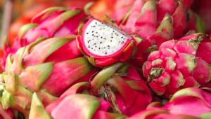 Tropik 'Ejder Meyvesi' Satarak Yılda 160 Bin Lira Kazanıyor!