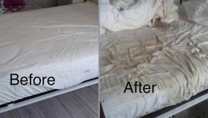 Evini Airbnb'de Kiraya Verdi! 45 bin TL'lik Zarara Uğradı