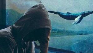 Mavi Balina Oyunu Çocukları Nasıl Öldürüyor?