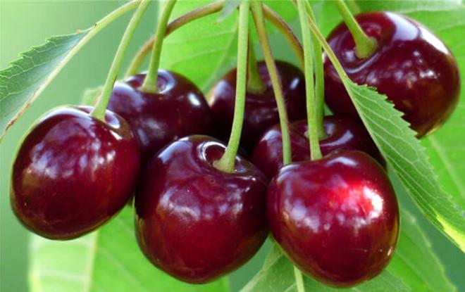 Kutsal Kitabımızda Adı Geçen 12 Yiyecek ve Faydaları