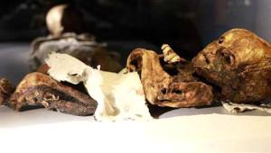 Bu Mumyalar Türkiye'de Tek Bir Müzede Sergileniyor!