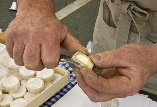 Kahvaltının Vazgeçilmezi Peynir Kanser Hücrelerini Öldürüyor