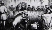 Orta Çağda Hayvanlar Bile İdam Ediliyordu!