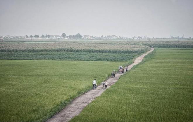 Kadın Askerler Beslenme Yetersizliği Yüzünden Regl Olamıyor! İşte Kuzey Kore'nin Bilinmeyen Yüzü