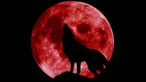 31 Ocak 2018 Kanlı Ay Tutulması Saatine Dikkat!