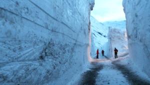 Yedi Metrelik Kar! Dünya Bu Fotoğrafı Konuşuyor