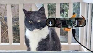 Kedisi İçin Yüz Tanıma Cihazı İcat Etti!