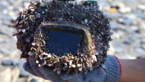 Okyanusta Kaybettiği Kamerasını 2.5 Yıl Sonra Buldu!