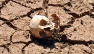 Koyun Otlatan Çoban İnsan Kafatası Buldu