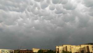 Tokat'ta İlginç Manzara! Görenler Şaşkına Döndü