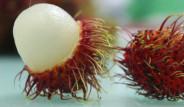 Mucize Meyve, Sperm Kalitesini ve Cinsel Gücü Arttırıyor