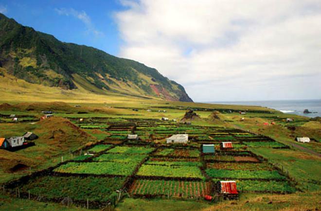 300 İnsan, 300 Sığır, 500 Koyun Bu Adada Yaşıyor
