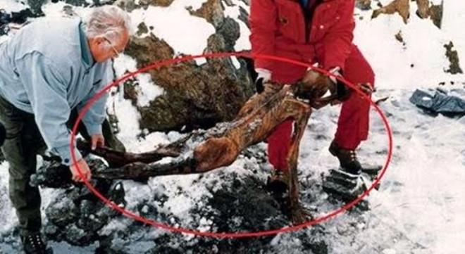 5300 Yıl Önce Yaşamış Buz Adam Ötzi'nin Son Yemeği
