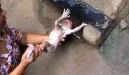 Kanalizasyona Kedi Sıkıştı Sanıp Yardıma Koştular, Yeni Doğmuş Bebek Çıktı!