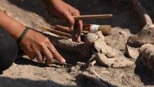 Çanakkale'de 5 Bin Yıllık Döneme Işık Tutan 'Son Troyalı'nın İskeleti Bulundu