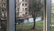 İnternet Kullanıcılarını İkiye Bölen İllüzyon: Göl mü Duvar mı?
