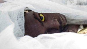 Dünya Sağlık Örgütü Açıkladı: 250 Bin Kişinin Ölümüne Neden Olacak