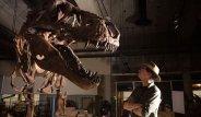 Dünyanın En Büyük Dinozor Fosili Bulundu!
