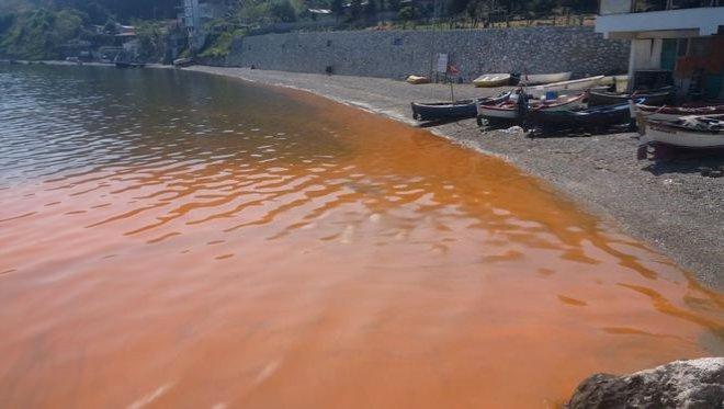 Sahil Kızıla Boyandı, Gören Yetkilileri Aradı!