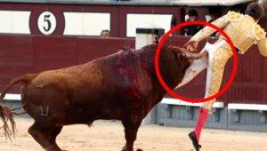 Boğa Güreşçisinin Zor Anları: Boynuzuyla Kalçasından Yakalayıp Fırlattı