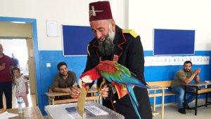 Osmanlı dönem kıyafeti giyip, papağanıyla oy kullandı!