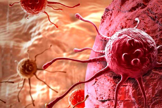 Sadece bir yemek kaşığı bile kansere kalkan oluyor! İşte kansere geçit vermeyen 10 besin
