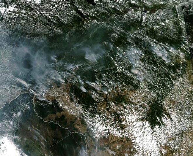 Gezegenimizin akciğerleri yanıyor! Amazon yağmur ormanları yok olma tehlikesiyle karşı karşıya