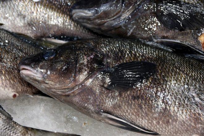 Balığın kafasından çıkarılıp 10 TL'ye satılıyor! Faydasına inanamayacaksınız