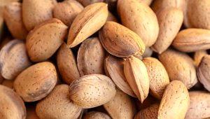 Günde 10 adet badem yediğinizde bakın ne oluyor! Etkisi inanılmaz