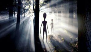 Dünyanın konuştuğu bilim adamından olay açıklama: 30 yıl içinde uzaylıları göreceğiz