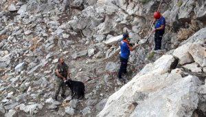 Bir haftadır kayalıklarda mahsur kalan keçi, 7 saat süren çalışmanın ardından kurtarıldı