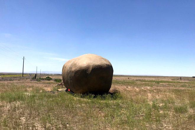 Arazinin ortasındaki devasa patatesin içinde ne olduğunu gören şaşıp kalıyor!