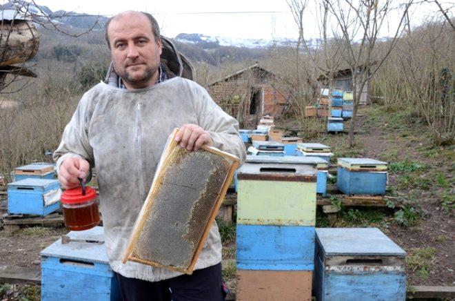 'Arılar bana bir şey yapmaz' dedi, yarı çıplak peteklerin arasına daldı!