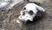 Bilim dünyasını heyecanlandıran keşif! Çorum'da Hitit dönemine ait olduğu düşünülen insan kemikleri bulundu