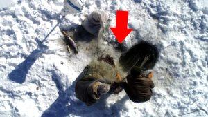 Burası Kuzey Kutbu değil Türkiye! Van'da donan baraj gölünde Eskimo usulü balık avlıyorlar