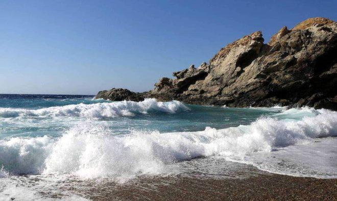 Meksika plajında yürüyüş yaparken tesadüfen bulunan canlı yürekleri ağza getirdi! Ne gözü var ne yüzgeci!