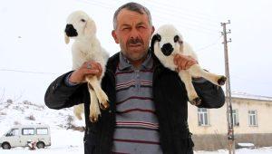 Nevşehir'in geçim sıkıntısı yüzünden terk edilen köyünde yıllardır tek başına yaşıyor!