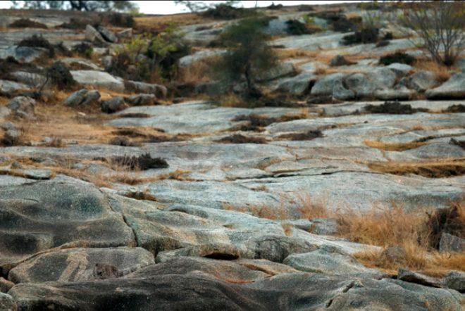Bu fotoğrafa çok dikkatli bakın, kayalıklara gizlenen leoparı kimse bulamıyor!