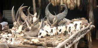 Hayvan kemikleri ile dolu olan pazara sadece büyücüler geliyor! İşte dünyanın en korkunç 10 yeri