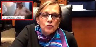 Toplantı sırasında kameranın kapalı olduğunu zanneden 66 yaşındaki senatör, çırılçıplak kaldı