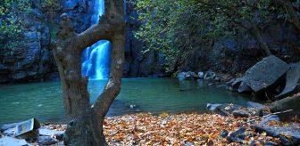Çöl sıcaklarında serinleten manzara! Burası Doğu'nun saklı cenneti: Şeyhandede Şelalesi