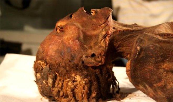 Yüzünde acı dolu ifade var! Çığlık atan mumyanın 3 bin yıllık gizemi çözüldü