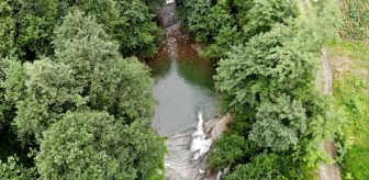 Ormanın ortasına gizlenmiş cennet! Gülderen Şelalesi'ni ilk defa görenler şaşkınlıktan çığlık atıyor