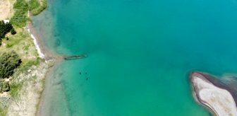 Bazı kısımları sapasağlam! 800 bin yıllık Van Gölü'nden bir batık gemi daha gün yüzüne çıkartıldı