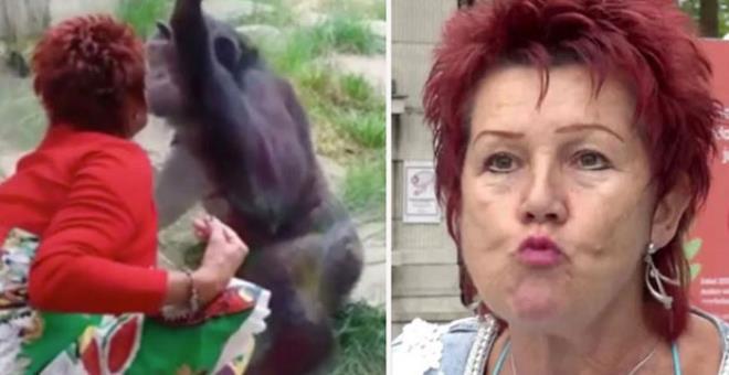 Maymuna aşık olan yaşlı kadın, hayvanat bahçesinden kovuldu