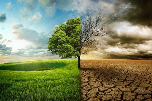 Yeşil dönüşümün faturasını kim ödeyecek?