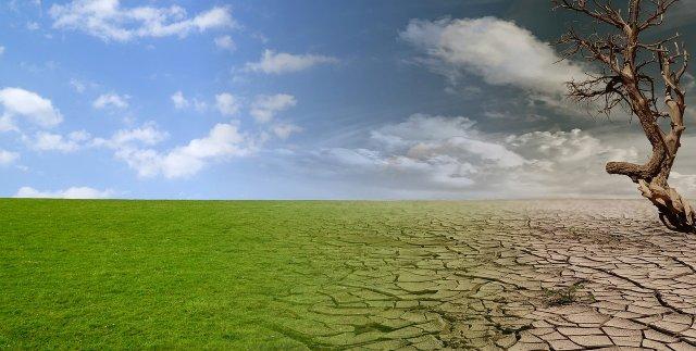 Türkiye iklim krizine hazır mı? İklim değişimi konusunda halk yeterince bilinçli m?