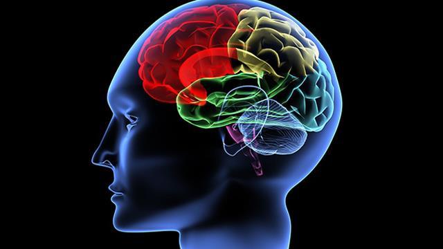 Beyin ve evrenin şaşkınlık uyandıran benzerlikleri
